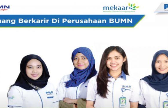 Lowongan Kerja Account Officer (AO) PT. Permodalan Nasional Madani (Persero) Area Rangkas & Pandeglang
