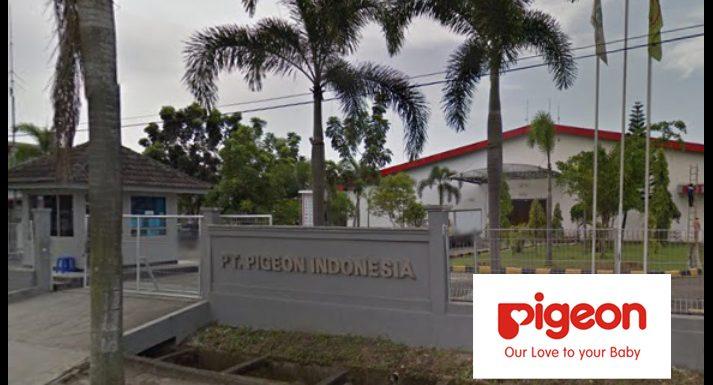 Lowongan Kerja SPV Packaging (Bagian Packaging) PT. Pigeon Indonesia Plant Cikande
