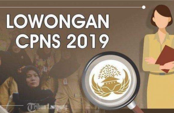 Berikut Hasil Seleksi Administrasi Penerimaan CPNS Kanwil Kementerian Hukum dan Hak Asasi Manusia Banten Tahun 2019.